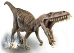 http://s.ngm.com/2007/12/bizarre-dinosaurs/img/dinosaurs_feature.jpg